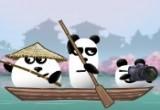 لعبة دببة الباندا فى اليابان