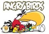 الطيور الغاضبة-اختلاف الصور