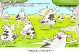 لعبة ملاكمة البقر