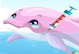 العاب دلفين في البحر